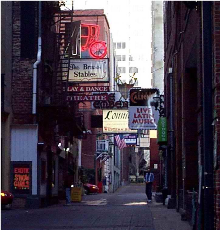 Can I Walk My Dog In Downtown Nashville