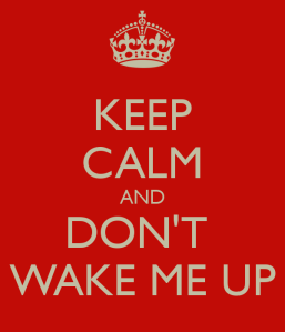 keep-calm-and-dont-wake-me-up-19